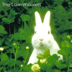 Lawnmowers cover